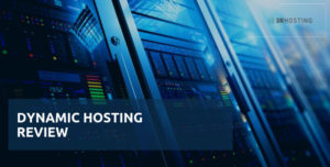 dynamic hosting review